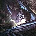 Batman Forever Icon