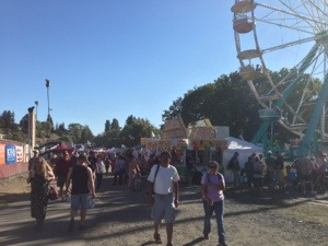 More of the Fair
